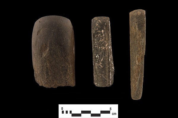 Various groundstone celts from the Joseph Picard site in Whitby, ON.